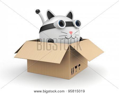 Robot kat in the cardboard box