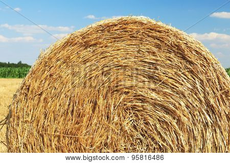 Hay stack detail. A close up of a haystack under the blue sky