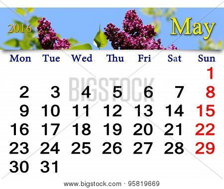 Calendar For May Of 2016 With Lilac
