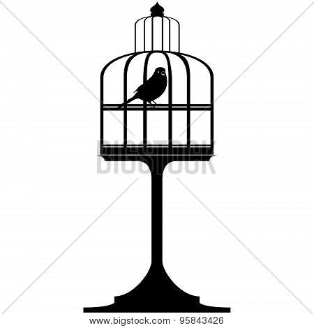 Cage With Birds-4