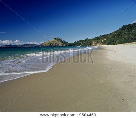 New Chums Beach, Coromandel.