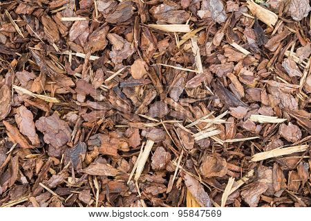 Natural Bark Used As A Soil Covering For Mulch In The Garden, Wood Chip Background Texture