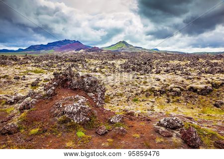 Gloomy Iceland in the summer. Fields covered with lava, in the central part of the island