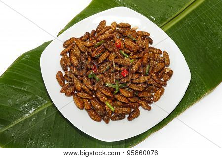 Fried Edible Insects On White Plate And Green Leaf