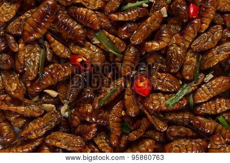 Fried Edible Insects Background