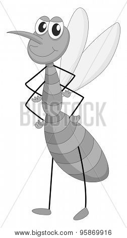 Mosquito standing alone in black and white