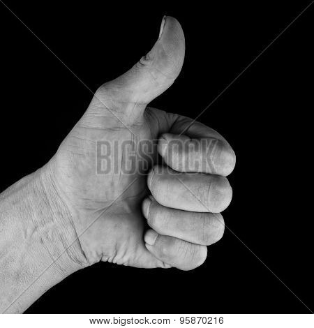 Male Hand Showing Thumbs Up For Success