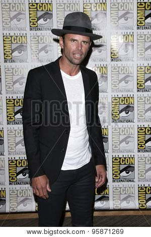 SAN DIEGO - JUL 11:  Walton Goggins at the