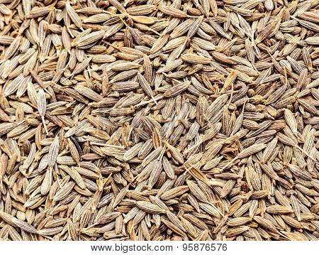 Cumin Seeds Background
