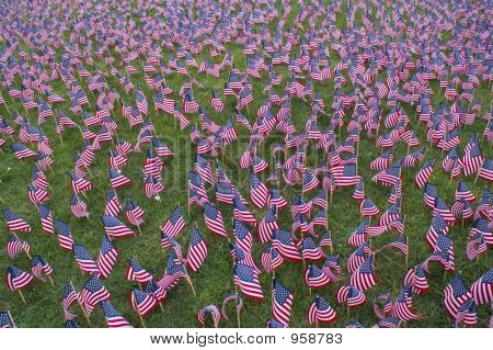 Us-Flag Field