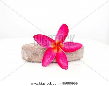 Pink Frangipani Flower Placed On The Stone Scrub Skin.