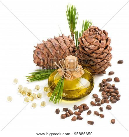 Cedar Pine Nuts And Oil