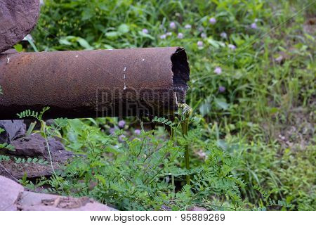 Rusty Old Drain Pipe