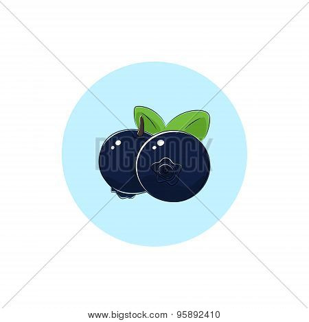 Icon Colorful Blueberries