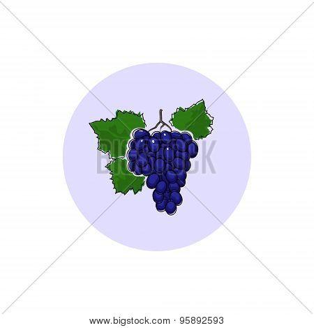 Icon Colorful Grapes