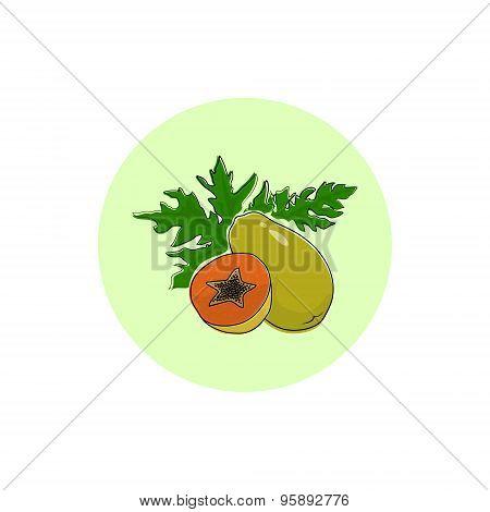Icon Colorful Papaya