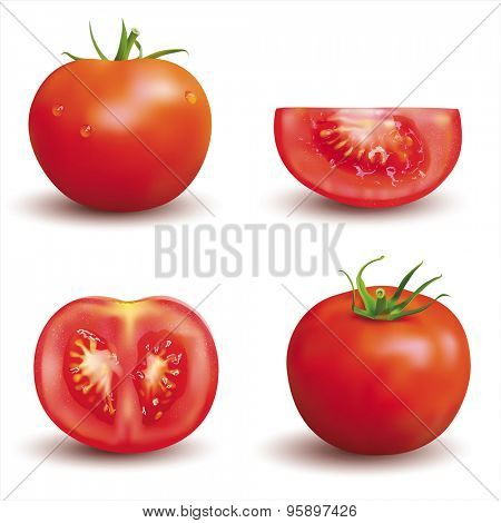Ripe red tomatoes isolated on white. Vector set.
