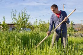 picture of scythe  - great man mows grass manual scythe - JPG