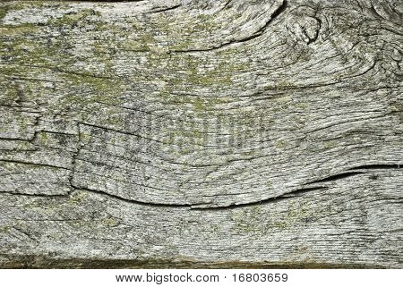 Old wood texture, hi quality background
