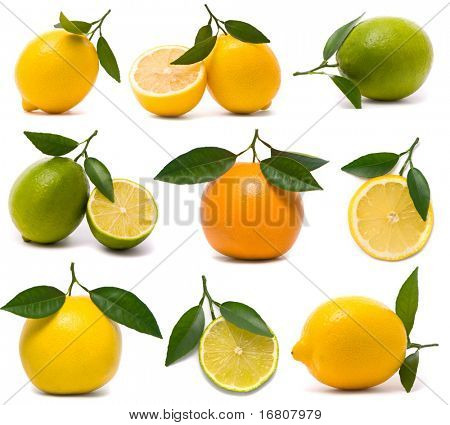 Fresh citrus set