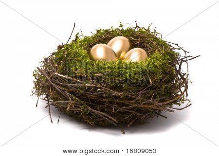 Goldene Eier in einem nest
