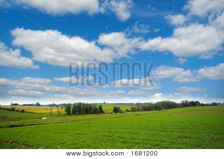 Farmland With Blue And Cloudy Sky