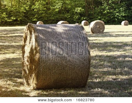 close up of golden classic hay bail rural background