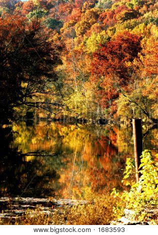 Autumn Glory In Reflection