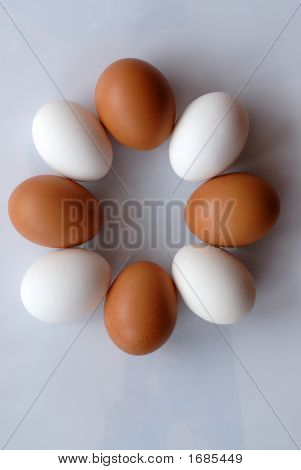 Necklace From Eggs