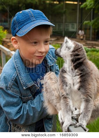 cute child with ring-tailed lemur
