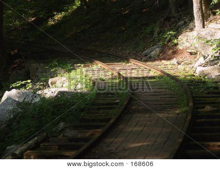 Loggin Track