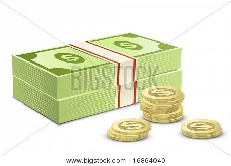 Pack of dollars and coins. Vector illustration of money