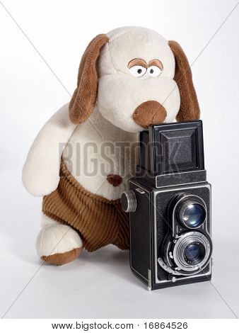 Plushy photographer - unauthorized homework