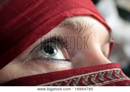 Arabian eye - closeup