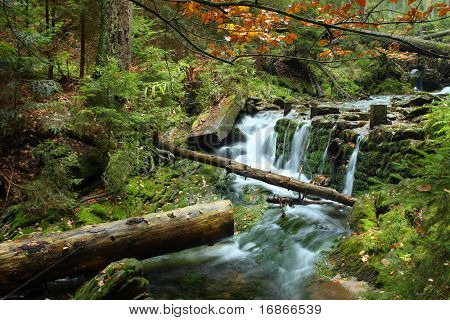 White creek - Most beautiful place in National park Sumava Czech Republic Europe