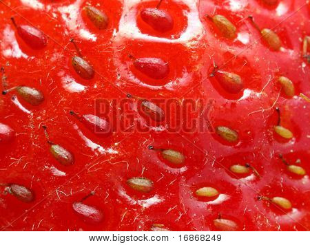 Strawberry - extremely close-up