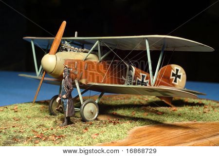 Aircraft model Albatross 1:72 Scale - extremely close up