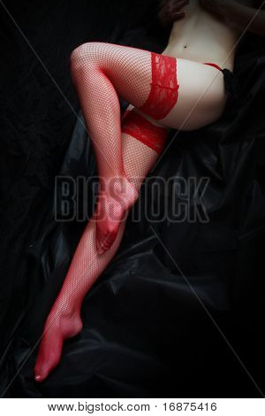 Low key studio shot beautiful slim legs in net nylons. Great image for calendar.