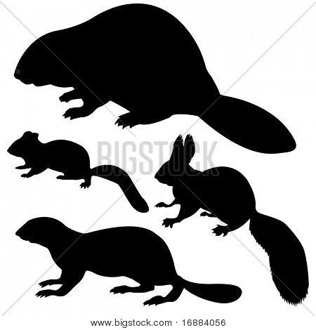 silhouettes beaver, squirrel, chipmunk, gopher