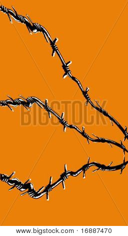 vector illustration of the barbed wire on orange background