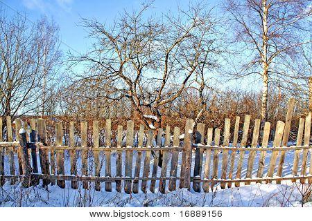 old fence in winter garden