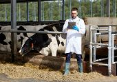 agriculture industry, farming, people and animal husbandry concept - veterinarian or doctor with tab poster