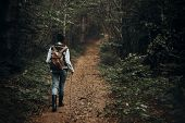 Hipster Traveler With Backpack Walking In Woods. Stylish Woman Hiking. Wanderlust And Travel Concept poster