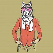 Vector dog concept. Hand draw vector siberian husky dog on human body. Husky in human suit poster