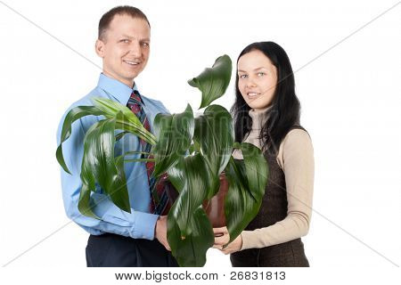 Young business couple holding a green plant and smiling, isolated on white