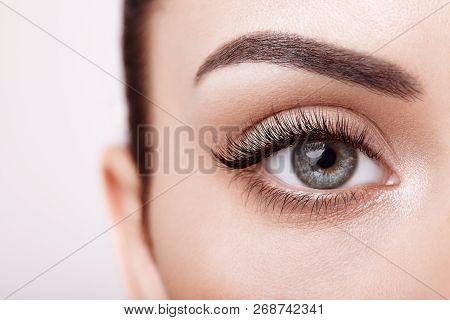 poster of Female Eye With Extreme Long False Eyelashes. Eyelash Extensions. Makeup, Cosmetics, Beauty. Close U