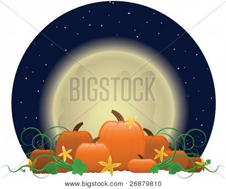 Glowing moon rising over a patch of bright orange pumpkins, ready for picking.