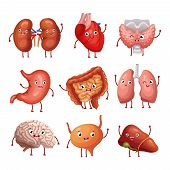 Cute Cartoon Human Organs. Stomach, Lungs And Kidneys, Brain And Heart, Liver. Funny Inner Organs Ve poster