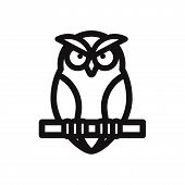 Owl Icon Isolated On White Background. Owl Icon In Trendy Design Style. Owl Vector Icon Modern And S poster