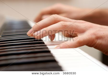 Hands Pianist And Piano Player